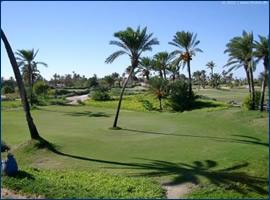 Djerba golf cours