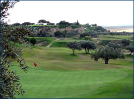 Flamingo golf Monastir